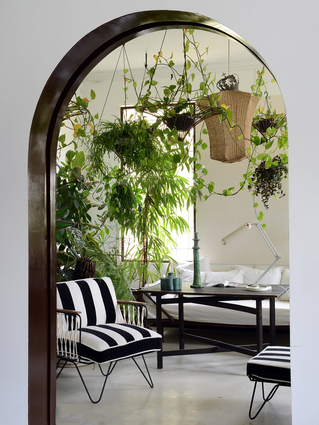 room with hanging planters and striped chair