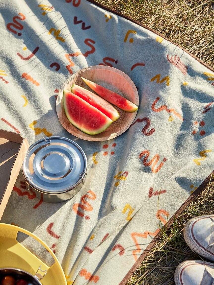 backyard picnic watermelon