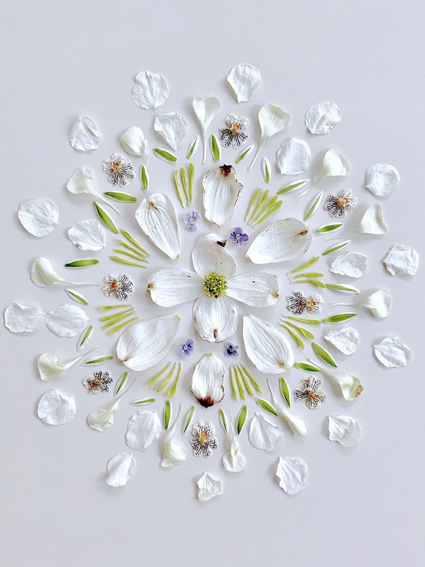 White leaf arrangement