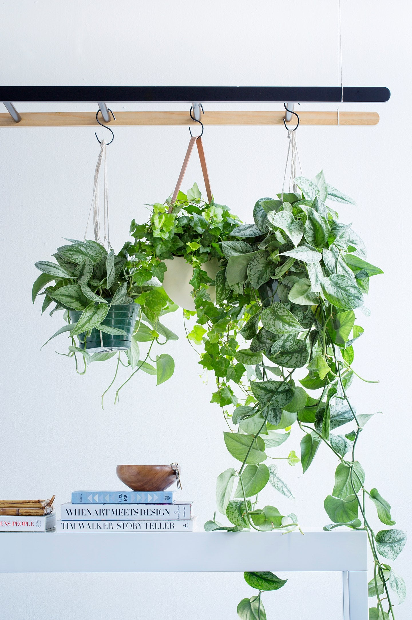 Yes, You Can Repurpose Food Scraps into House Plant Fertilizer