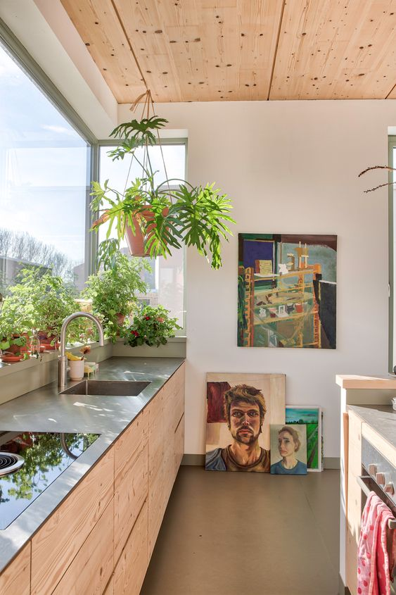 sunny wood kitchen with hanging plants