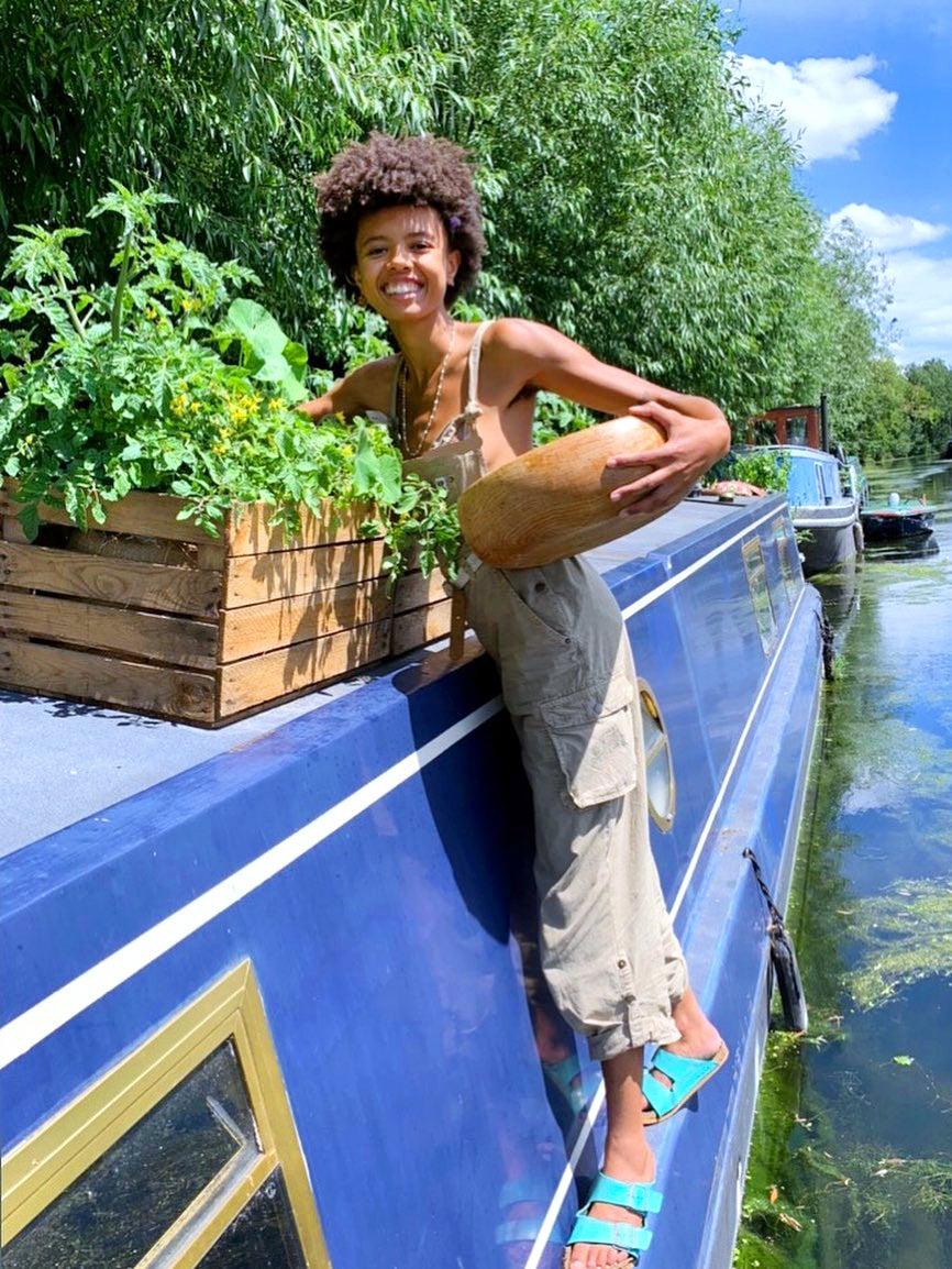 Poppy okotcha and plants on a blue boat