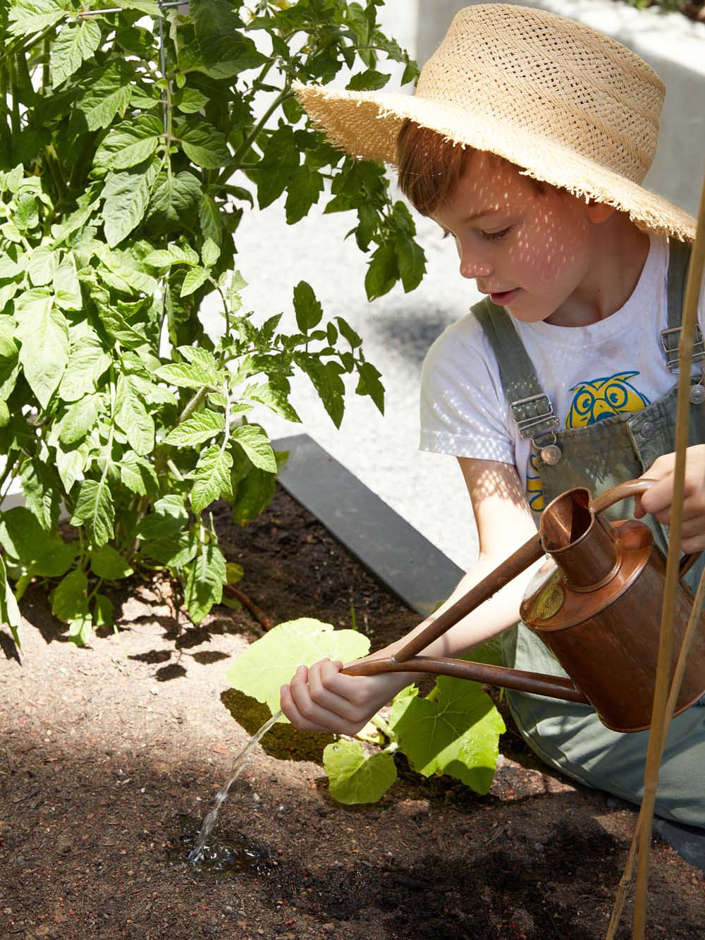 Erin Hiemstra's son watering plants
