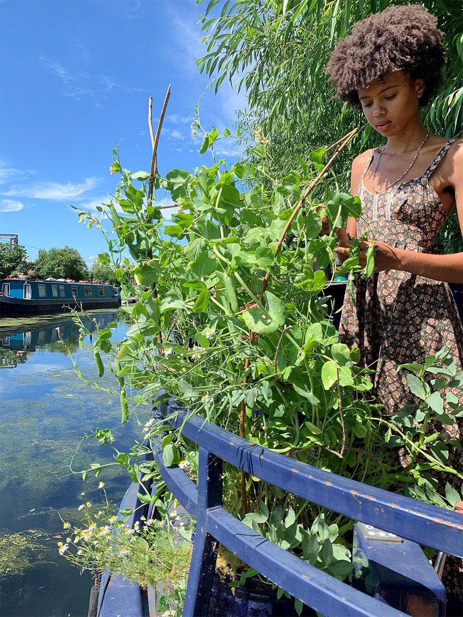 houseboat with planted garden