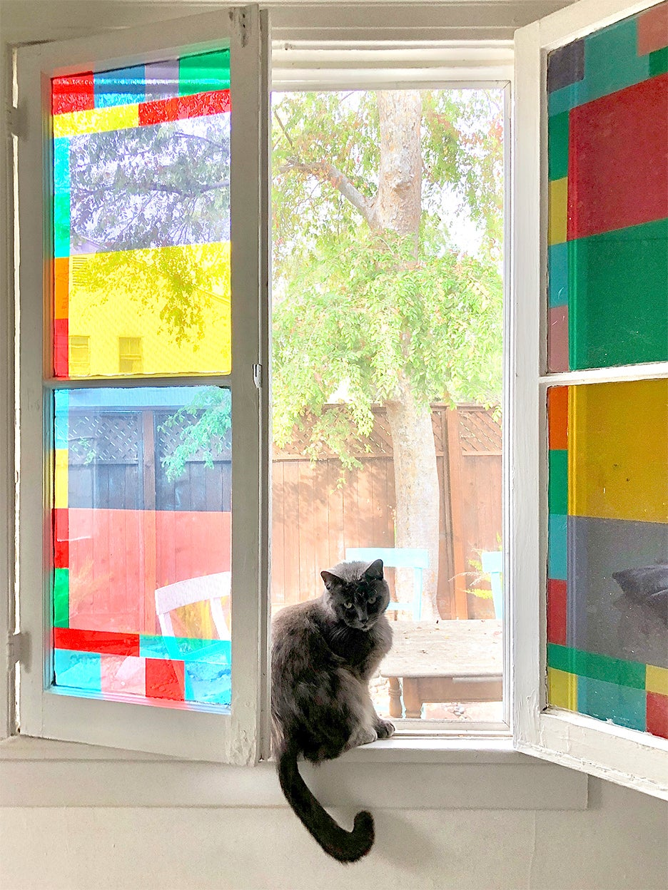 stained glass window and cat