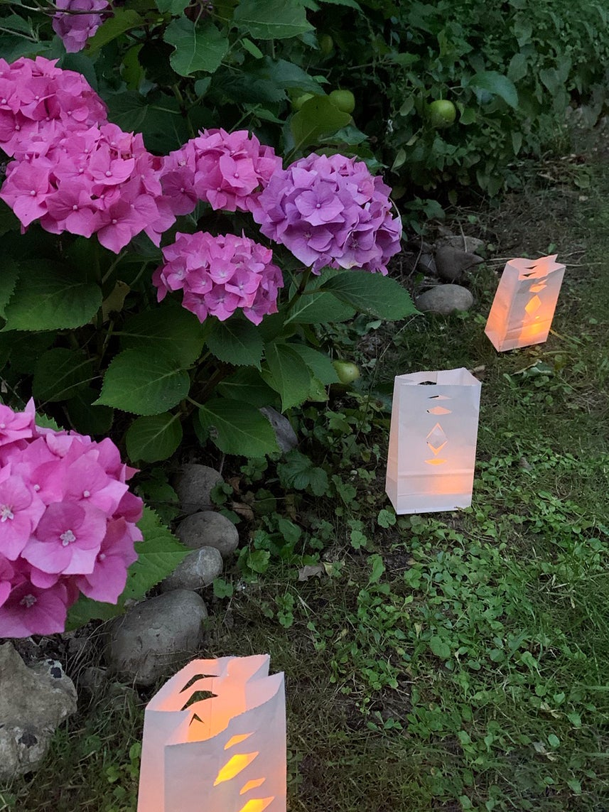 paper lanterns around purple flowers