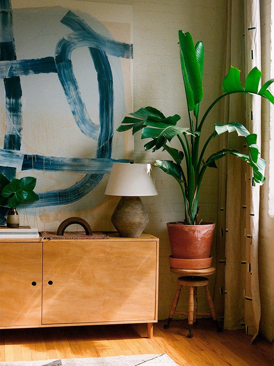 Corner of room with big plant