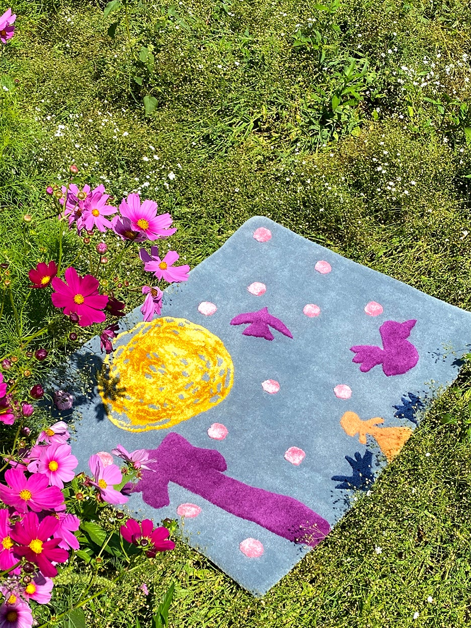 rug in the grass