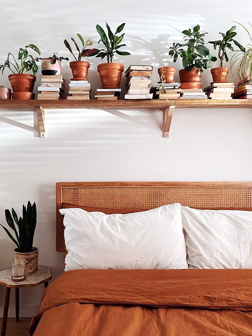 Plant shelf above bed