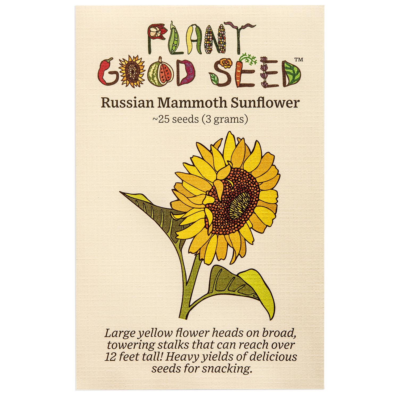 Sunflower-RussianMammoth_Packet_1500x1500_d092d17f-1d7c-4090-8a4b-66804a47c16b_2048x