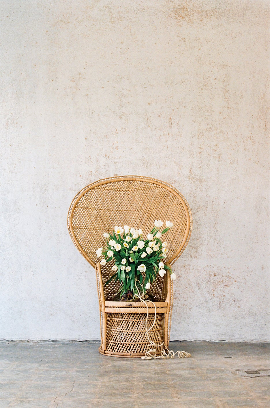 Flowers on a chair.
