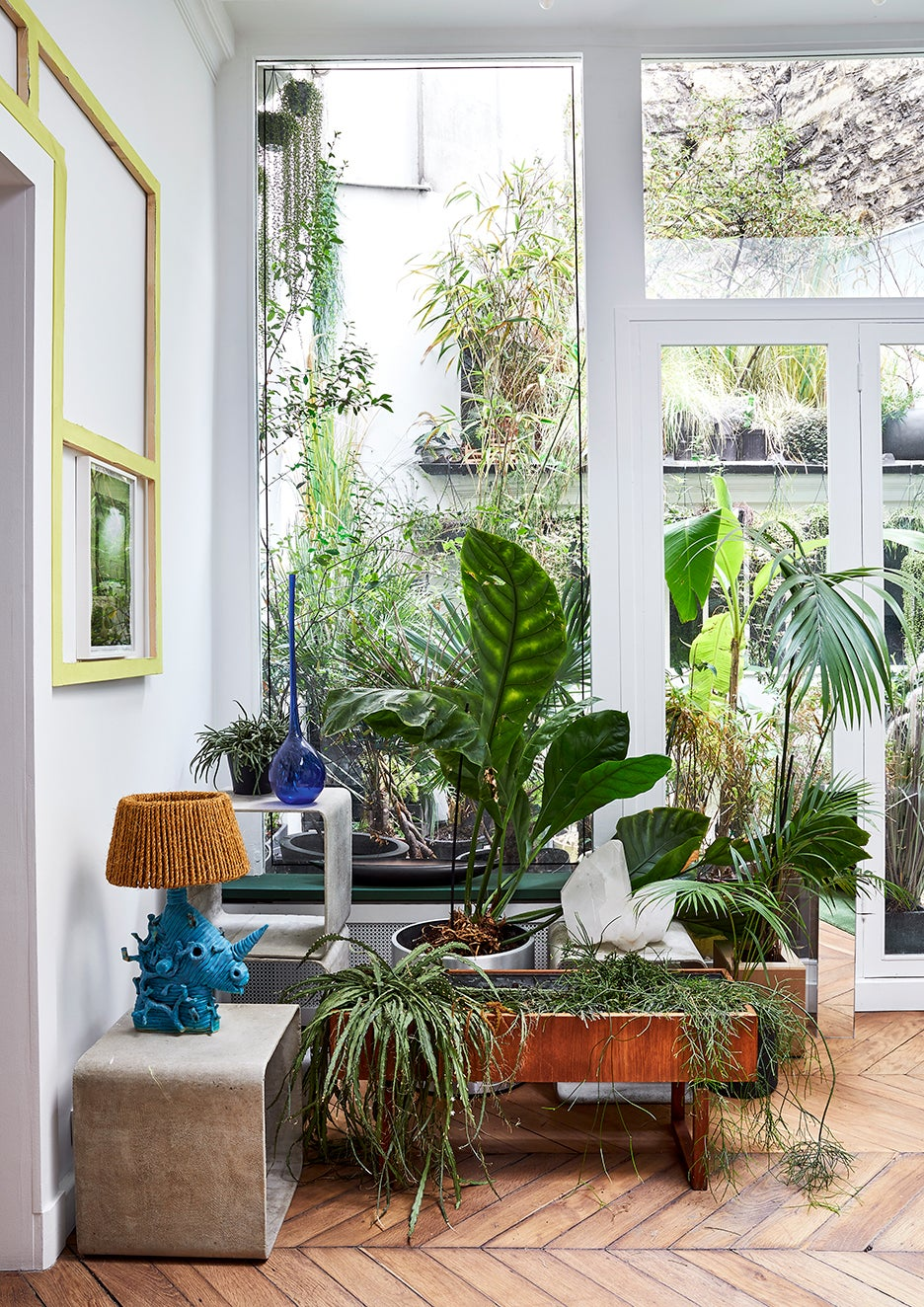Living room with plants and floor-to-ceiling windows