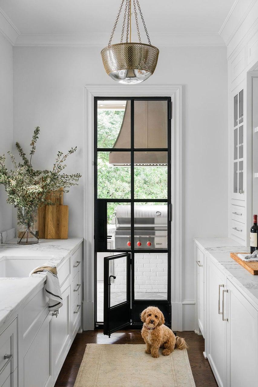 puppy infront of open door panle