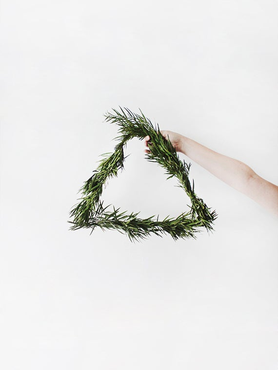 branches making a triangle