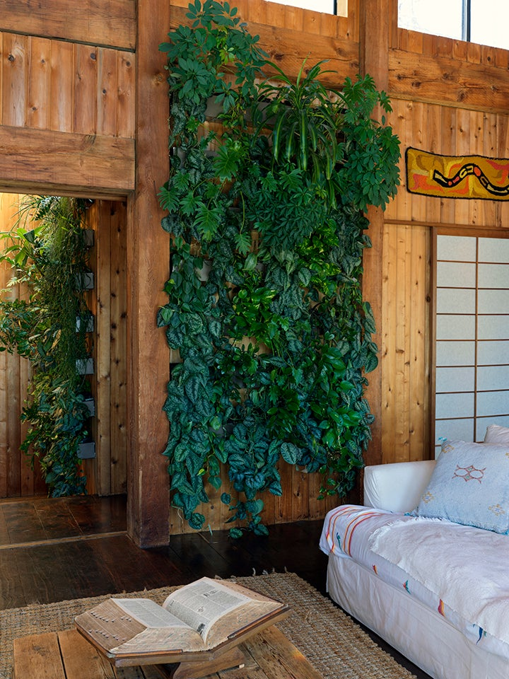 A Secret Structure Makes Mara Hoffman's Plant Walls Look Like They're Floating