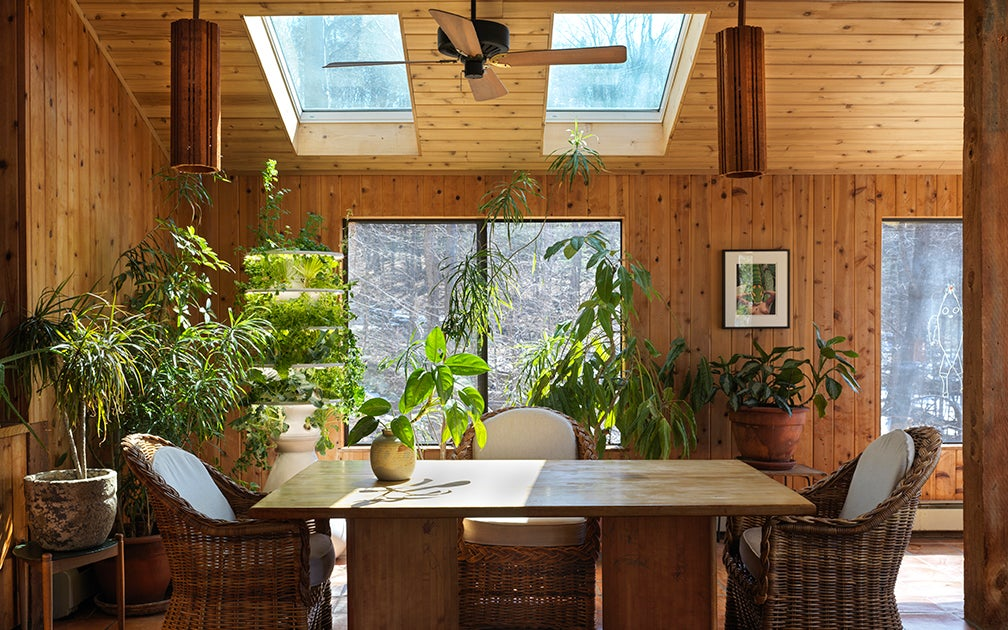 a living room full of plants