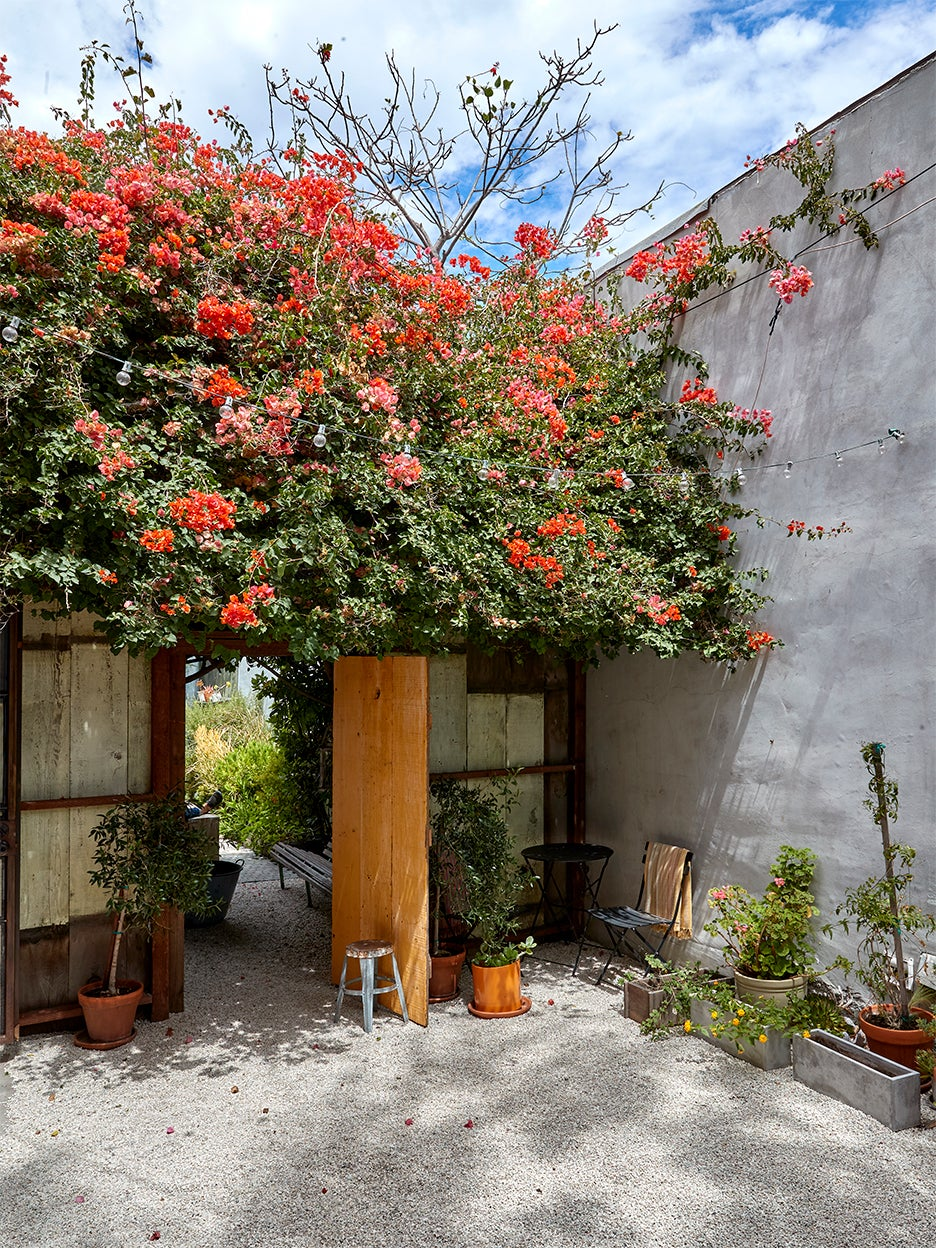 courtyard with blooming flowers