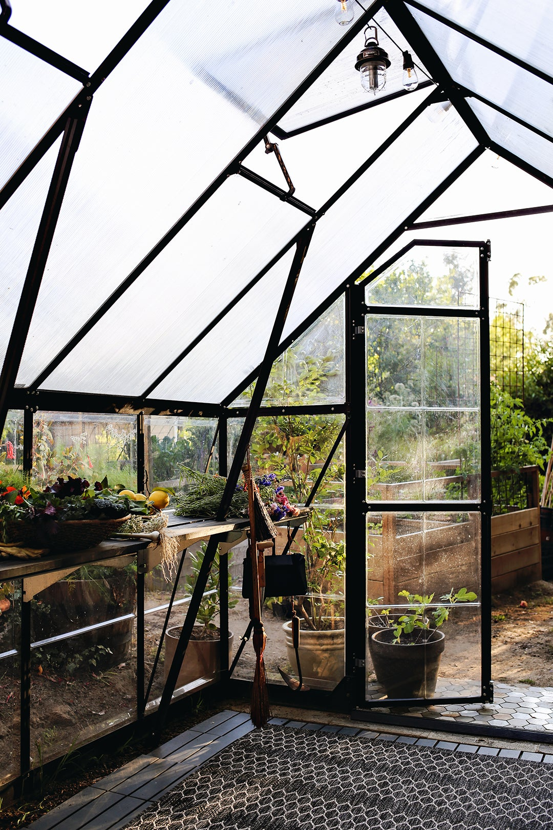 00-FEATURE-greenhouse-inspiration-domino