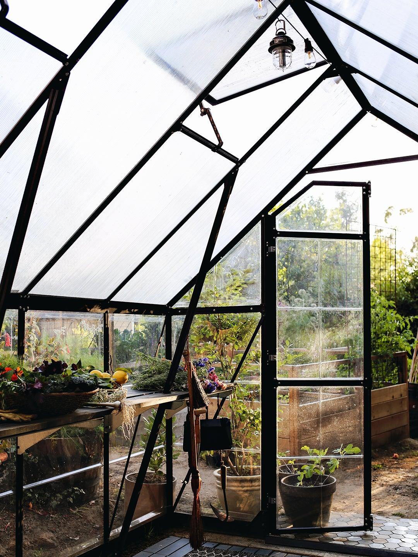 black metal greenhouse