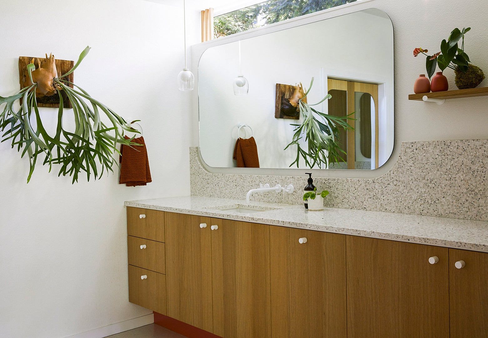 bathroom with plants and transom window