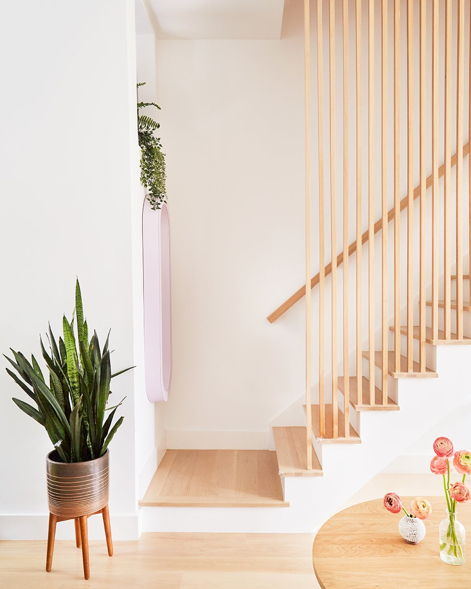wooden staircase with white walls and plants