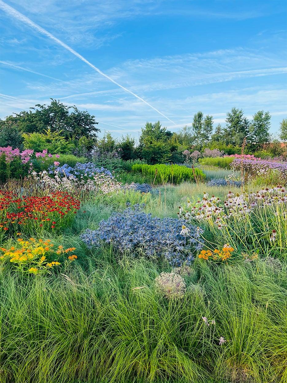 Legendary Garden Designer Piet Oudolf Shares His Go-To Tools