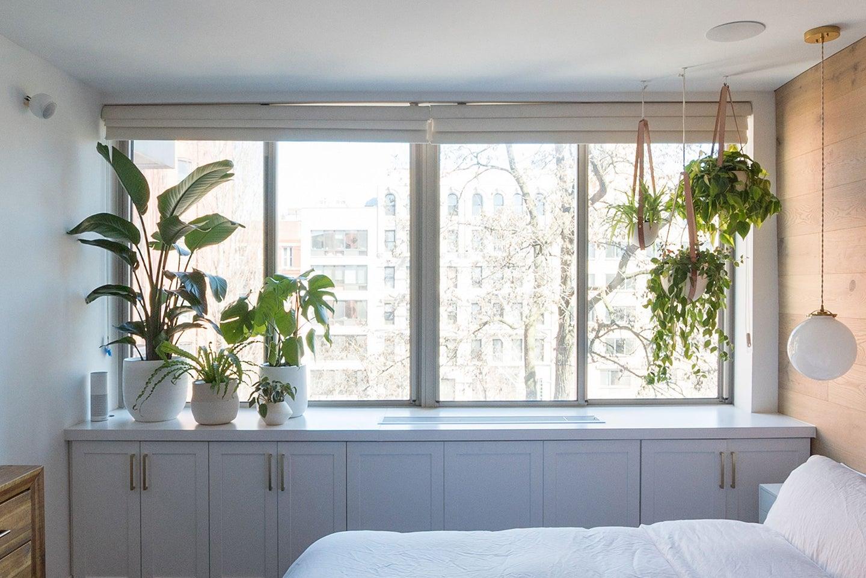 hanging plants in bedroom window