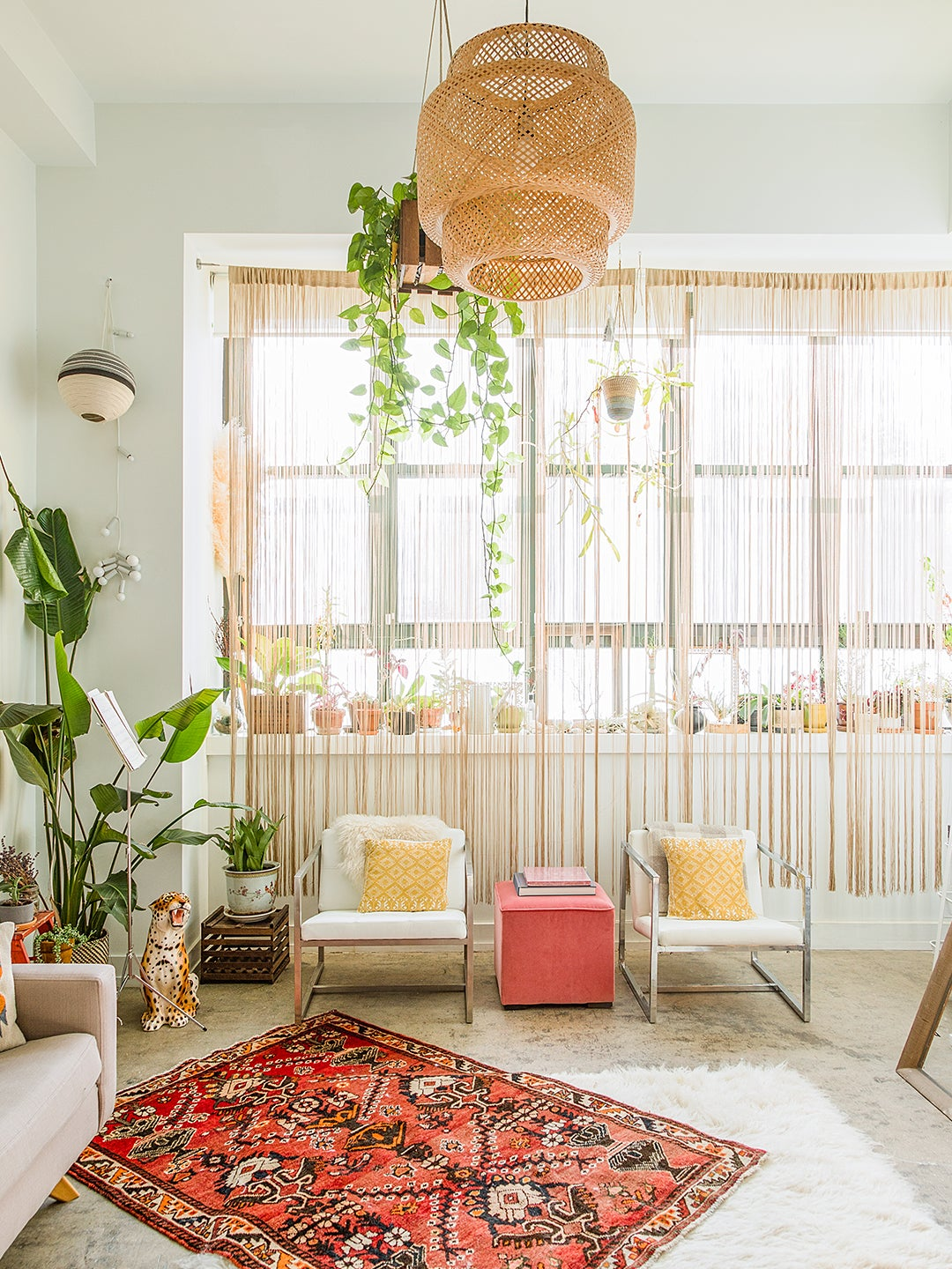 The Small-Space Plant Idea That's Trending in Dorms Right Now